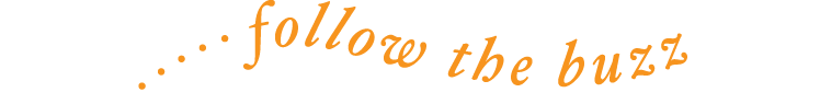 Bee Well Logo_PNG copy